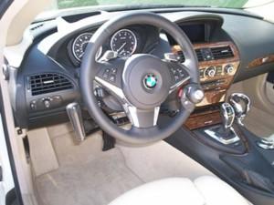 Driving Controls
